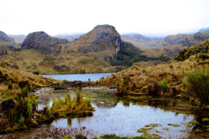 Andean Lake