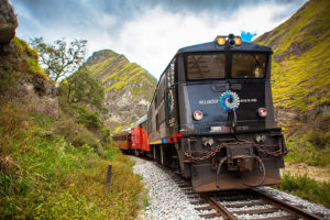 Andean Train