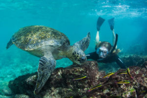 Galapagos Islands treasures