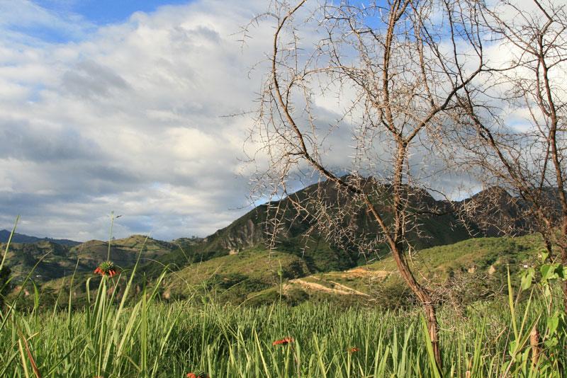 Vilcabamba Landscape